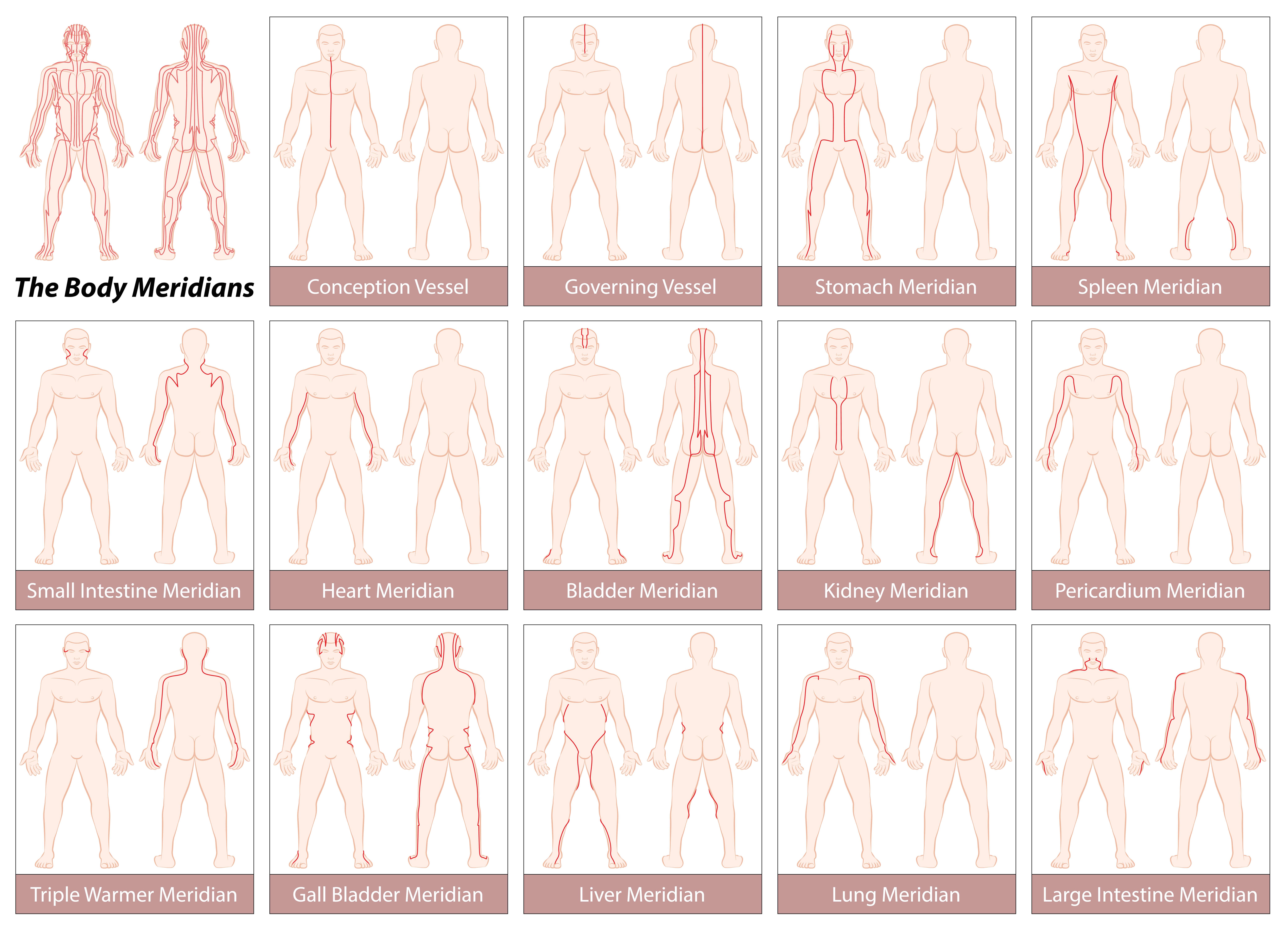 Body Meridians Chart